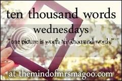 a thousand words wednesdays