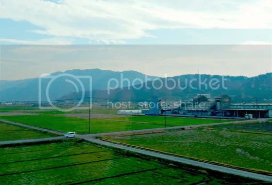 photo japan39.jpg