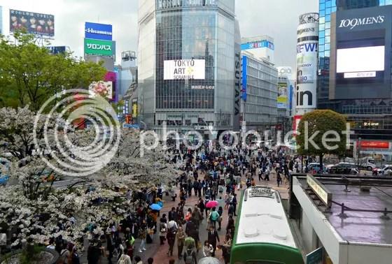 photo japan71.jpg