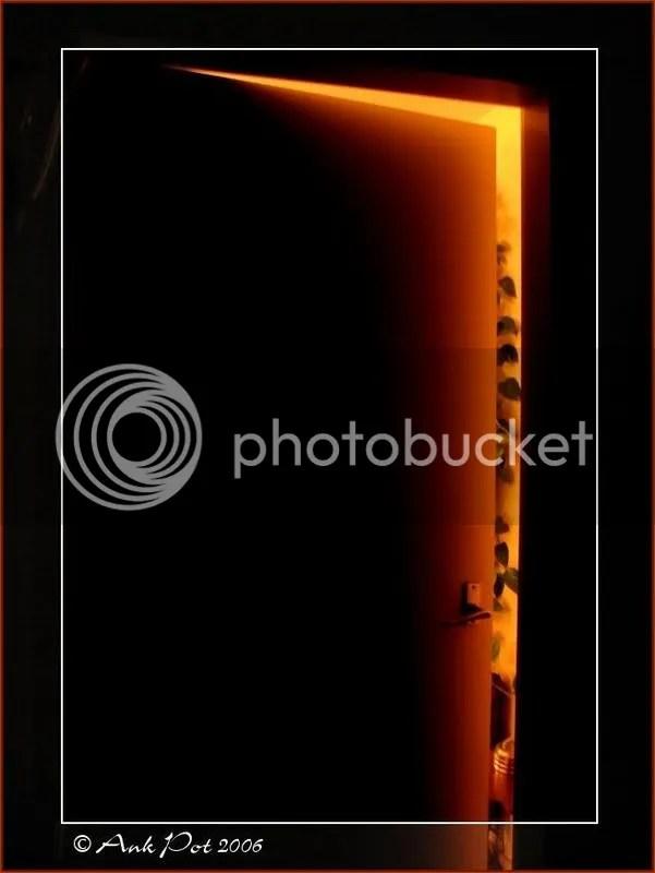 Log7-11-06-2.jpg