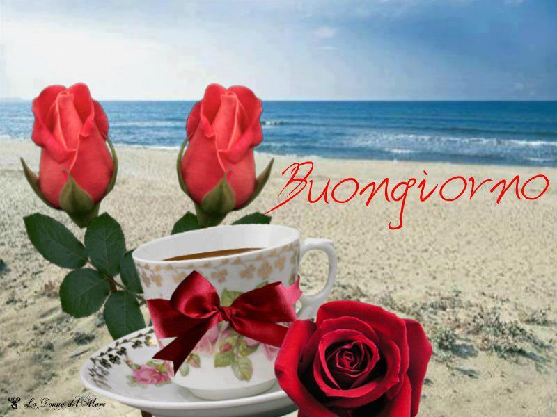 Buona domenica melodiestonate for Immagini bellissime buongiorno