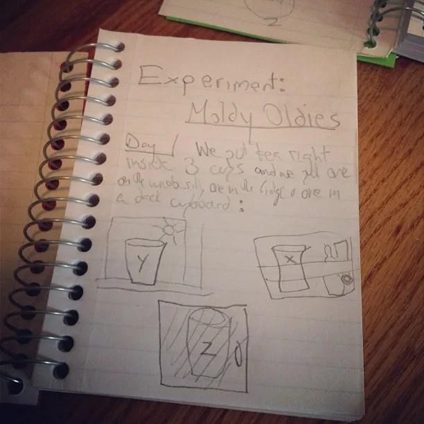 photo e8--.jpg