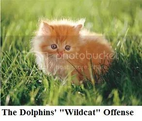 putty tat offense
