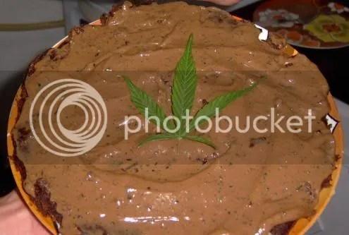 Tortita de Mafafa