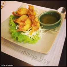 Mango Tree Fried Prawn Dumplings