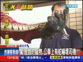 [新聞] 《飛機上有蛇》真實上演 空姐徒手抓蛇 - Gossiping板 - Disp BBS