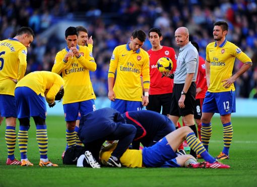 during the Barclays Premier League match between Cardiff City and Arsenal at Cardiff City Stadium on November 30, 2013