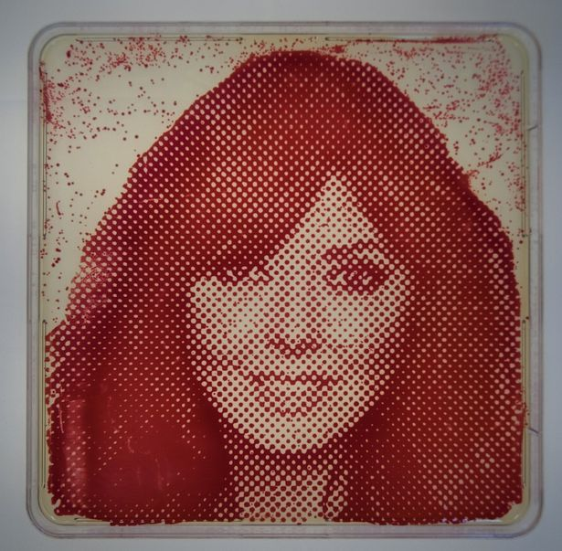 Carol Vorderman portrait made from her own bacteria