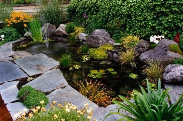 plant pond diarmuid