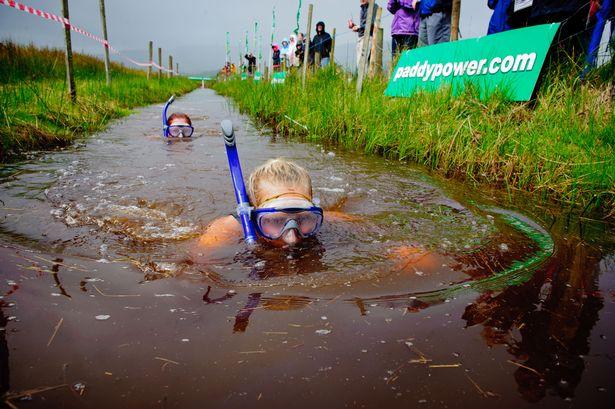 Image result for world bog snorkelling championships