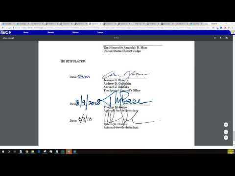 NEW Papadopoulos Filing: Discovery??
