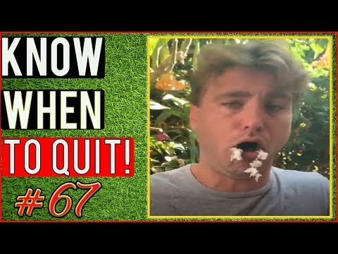 Weed Smoking Goes Wrong / Weed Fail Compilation / WEED FUNNY FAILS AND WTF MOMENTS! #67
