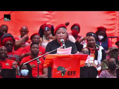 'Have 10 kids, the state will fund them' – Julius Malema