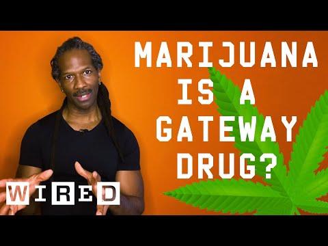 Dr. Carl Hart Debunks Drug Myths | WIRED