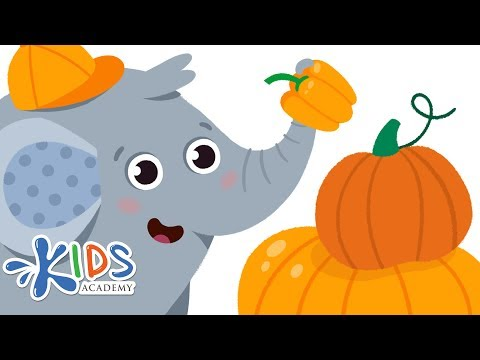 Learn Colors for Kids - Orange |  Color Song for Babies, Preschool & Toddlers | Kids Academy