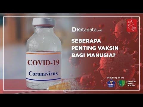 Seberapa Penting Vaksin Bagi Manusia ? | Katadata Indonesia