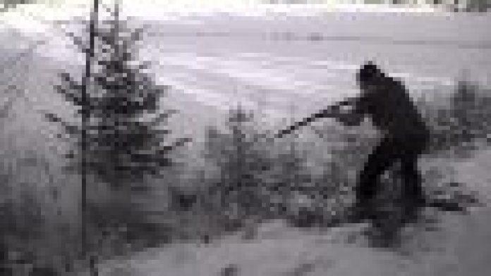 Wie echte Männer einen Weihnachtsbaum fällen