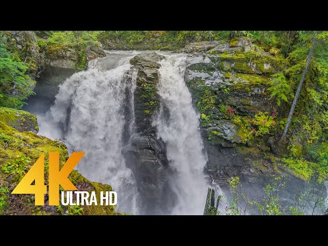 Fairy Tale Forest on a Rainy Day - 4K Relax Video with Waterfall Sounds - Short Preview Video