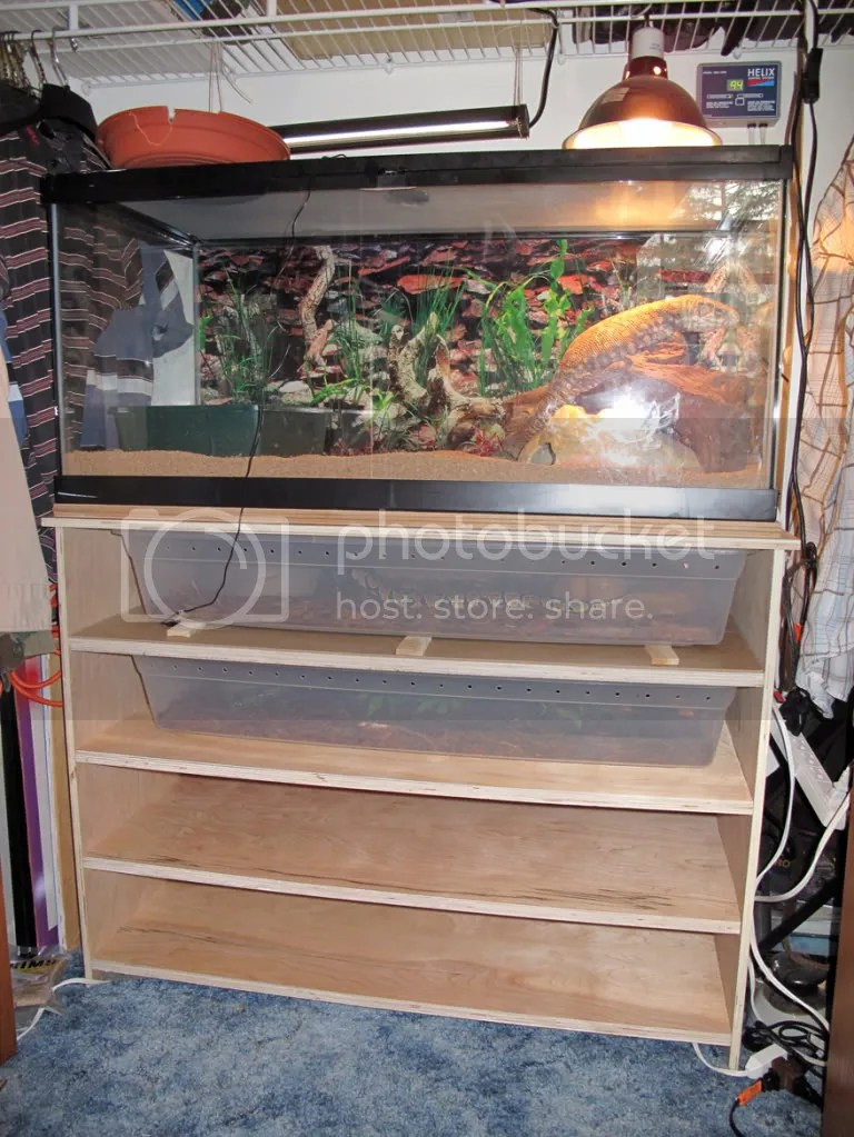 Reptile Cages Do It Yourself Reptile Tanks For