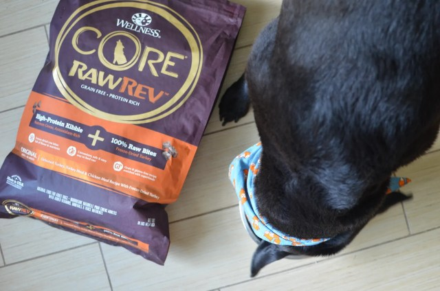 Show your dog you love them by keeping them healthy inside and out with Wellness® CORE® RawRev™