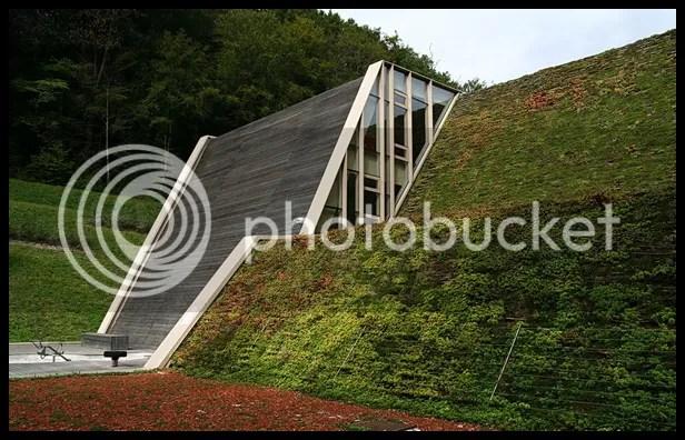 krov trava