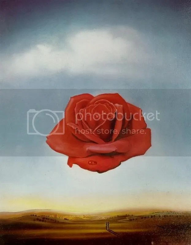 dali_meditative_rose