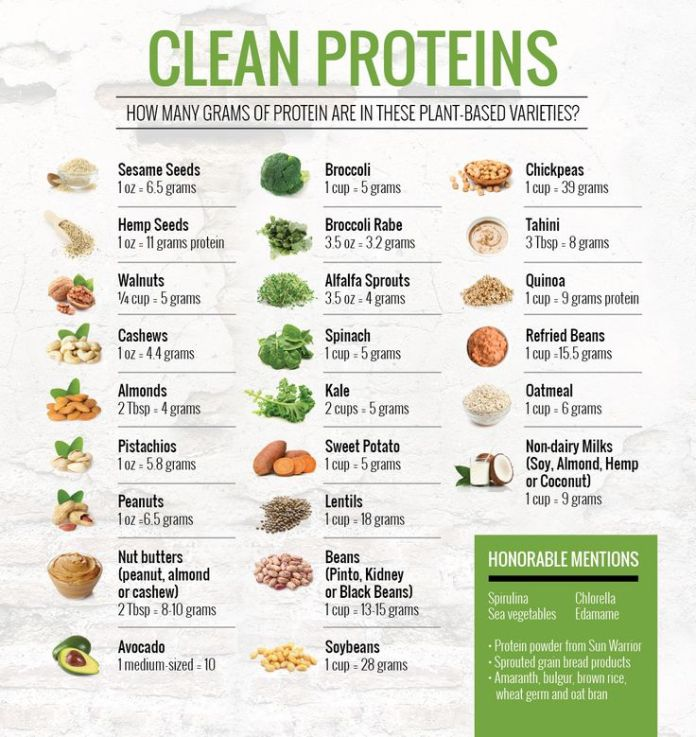 diet without counting calories clean protien