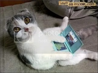 LOLcat with DS