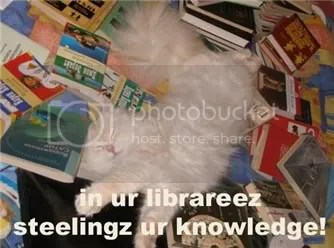 LOLcat library