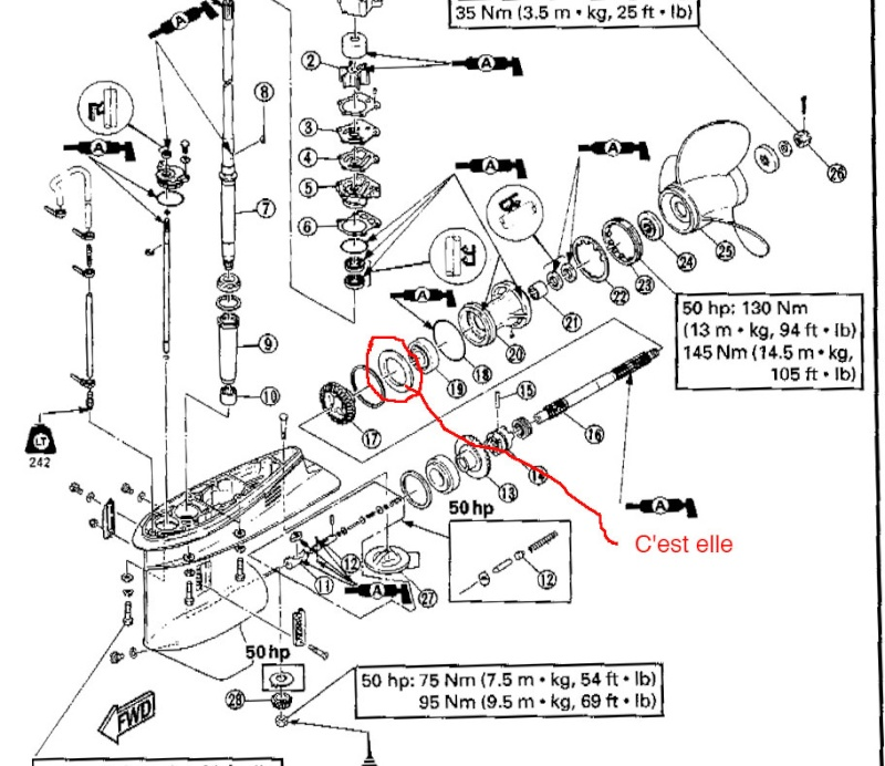 Yamaha Marine Outboard Schema Cablage