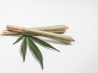 Buy Cannabis Pre-Rolls - Buy Weed Pre-Rolls - Buy Marijuana Pre-Rolls