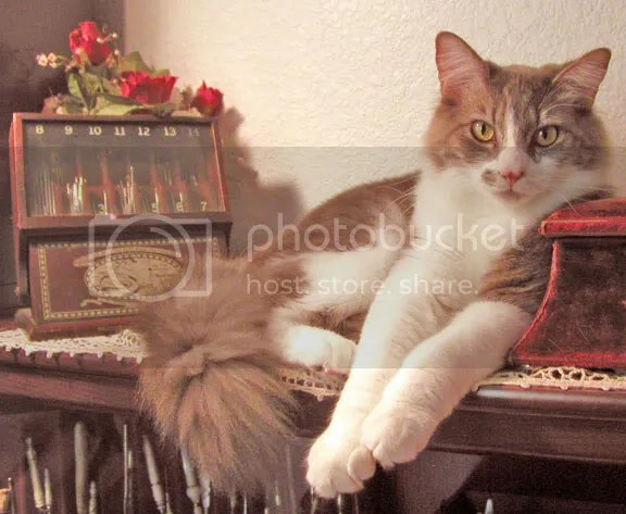 Bilbo poses for a picture next to the antique crochet hook case