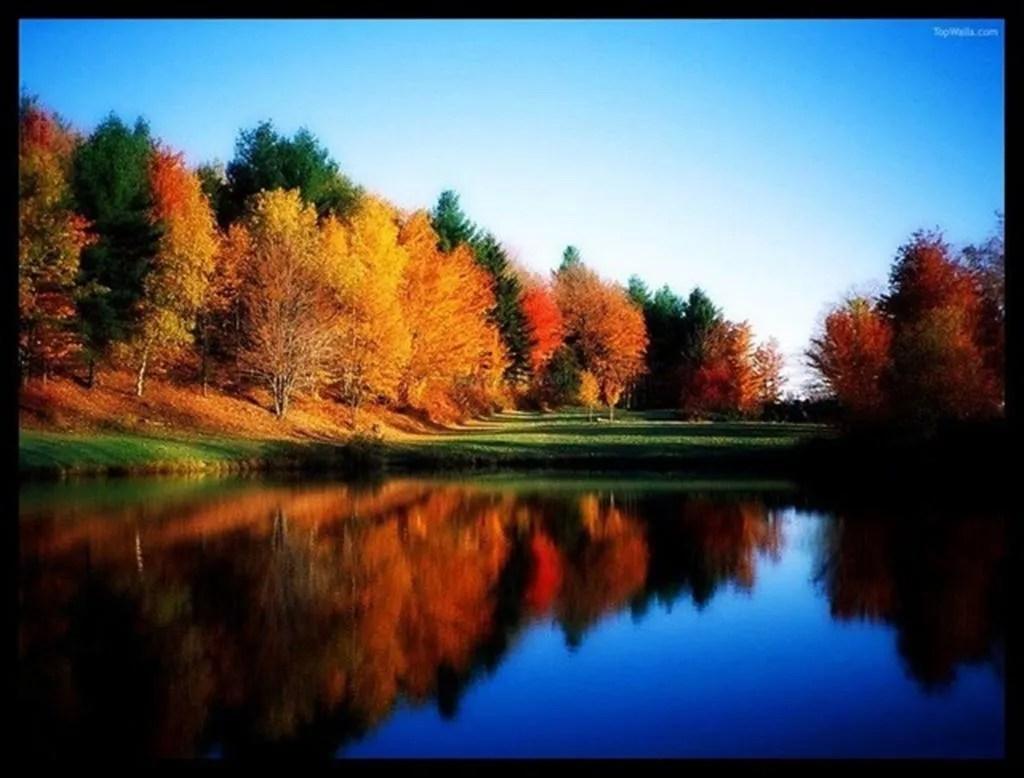 photo Autumn Large_zpshblo6ryg.jpg