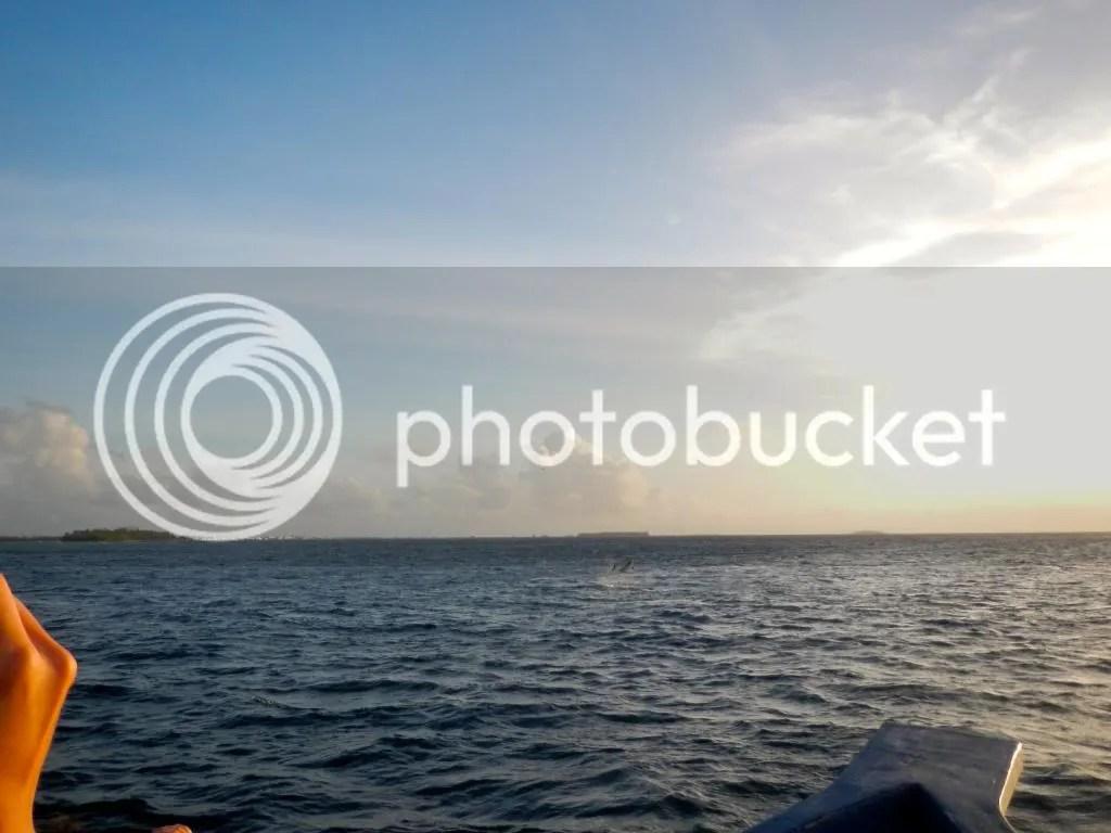 photo DSCN1571.jpg