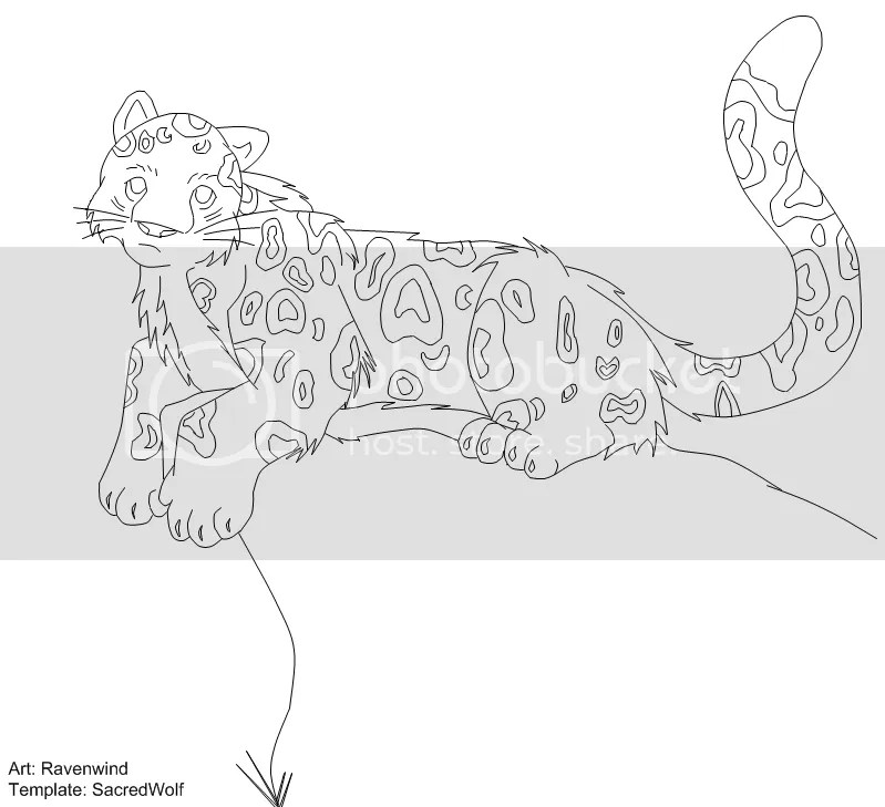 Ravenwind Snow Leopard Template Pictures, Images & Photos