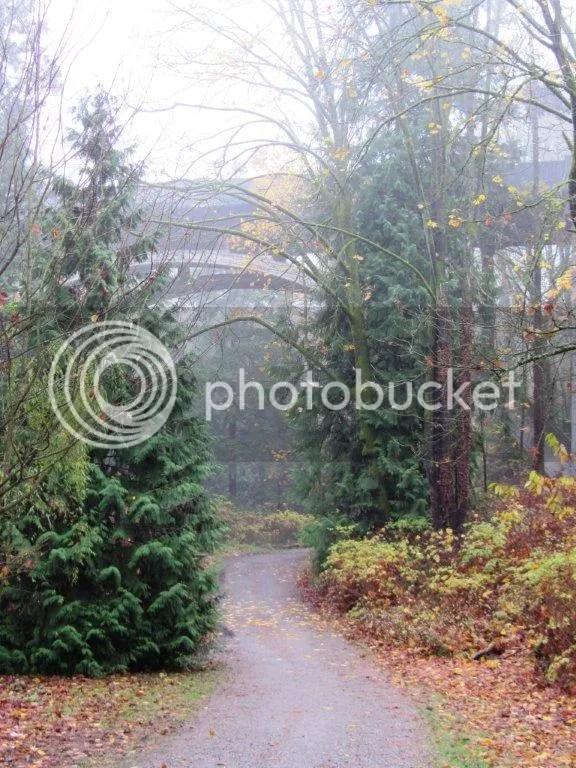 HalfMarathonRunfromthehouse140.jpg