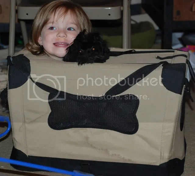 B in P's carrier