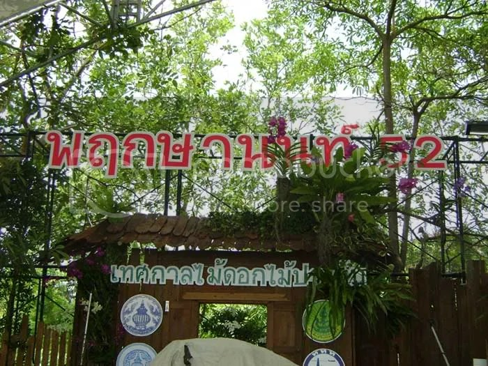 Festival Tanaman Hias ke 52