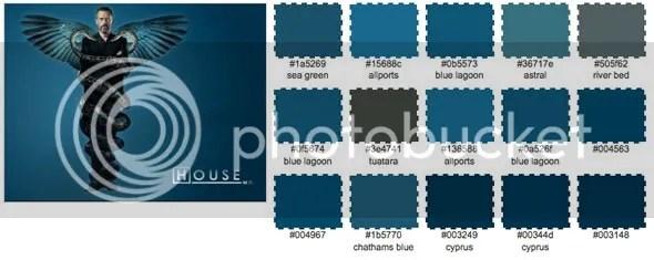 Doctor House Paleta de Color