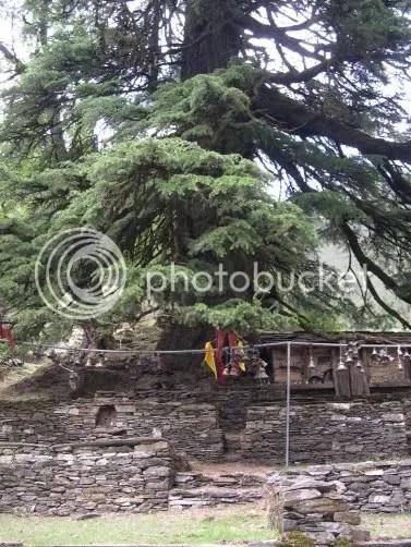 Latu devta temple