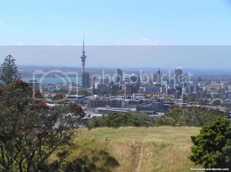 Auckland CBD from Mount Eden
