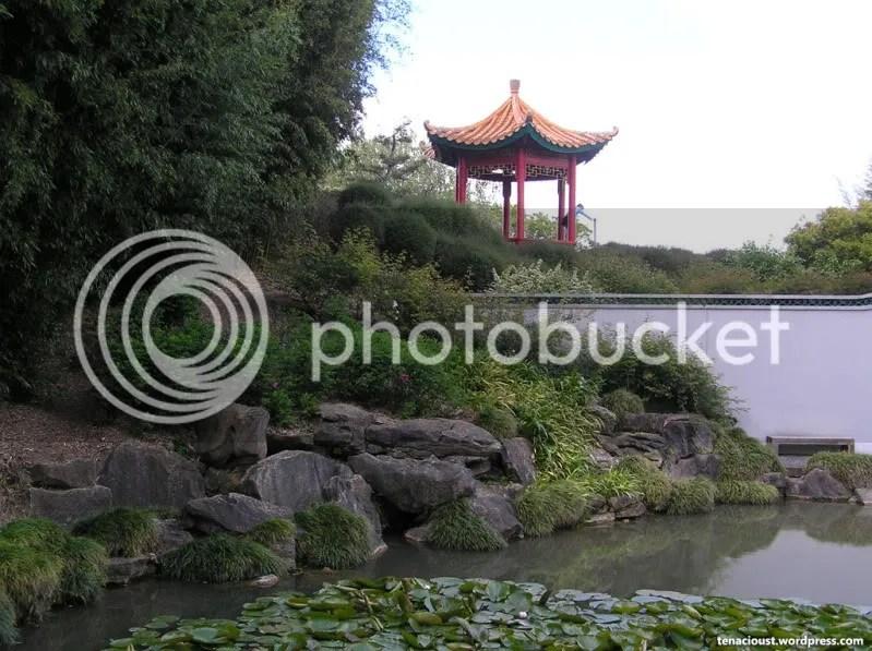 Chinese Scholars Garden
