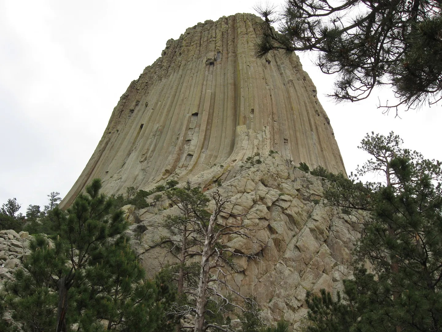 Wyoming's Devil's Tower