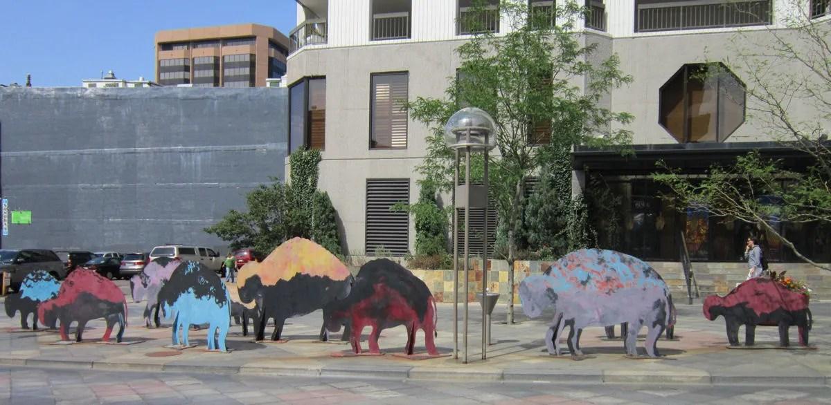 buffalo silhouettes, Denver, Colorado