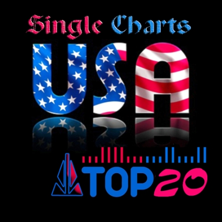 US TOP 20 Single Charts 22.06 (2013)