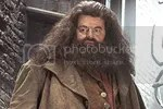 Hagrid Pictures, Images and Photos