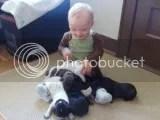 josh-and-puppies2