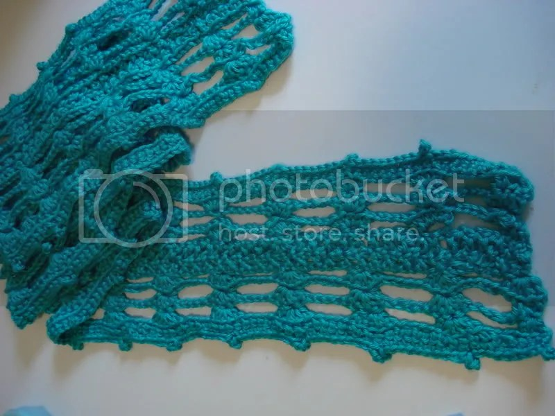 I crocheted this scarf for a swap on Craftster.org.  The pattern was designed by PinkLeo and its also on the site.