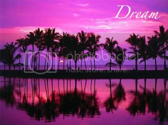 dream Pictures, Images and Photos
