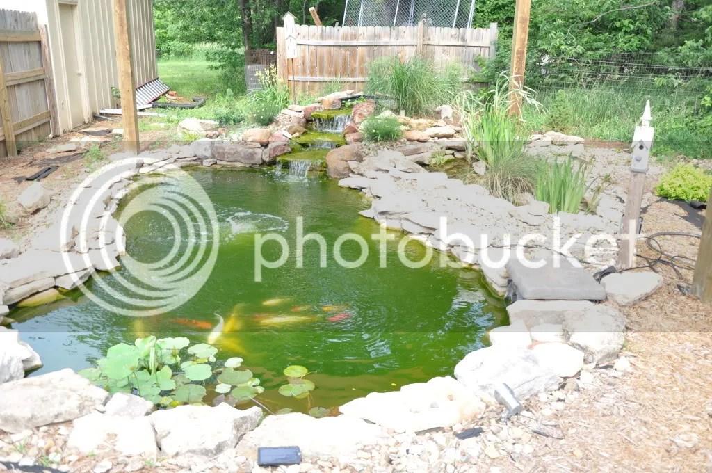 Pond Edge Redo